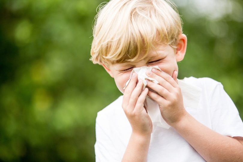 Child with seasonal allergies sneezing and holding tissue on his nose